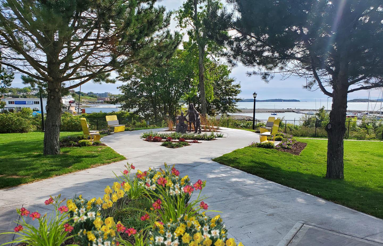 Daffodil Garden 2020