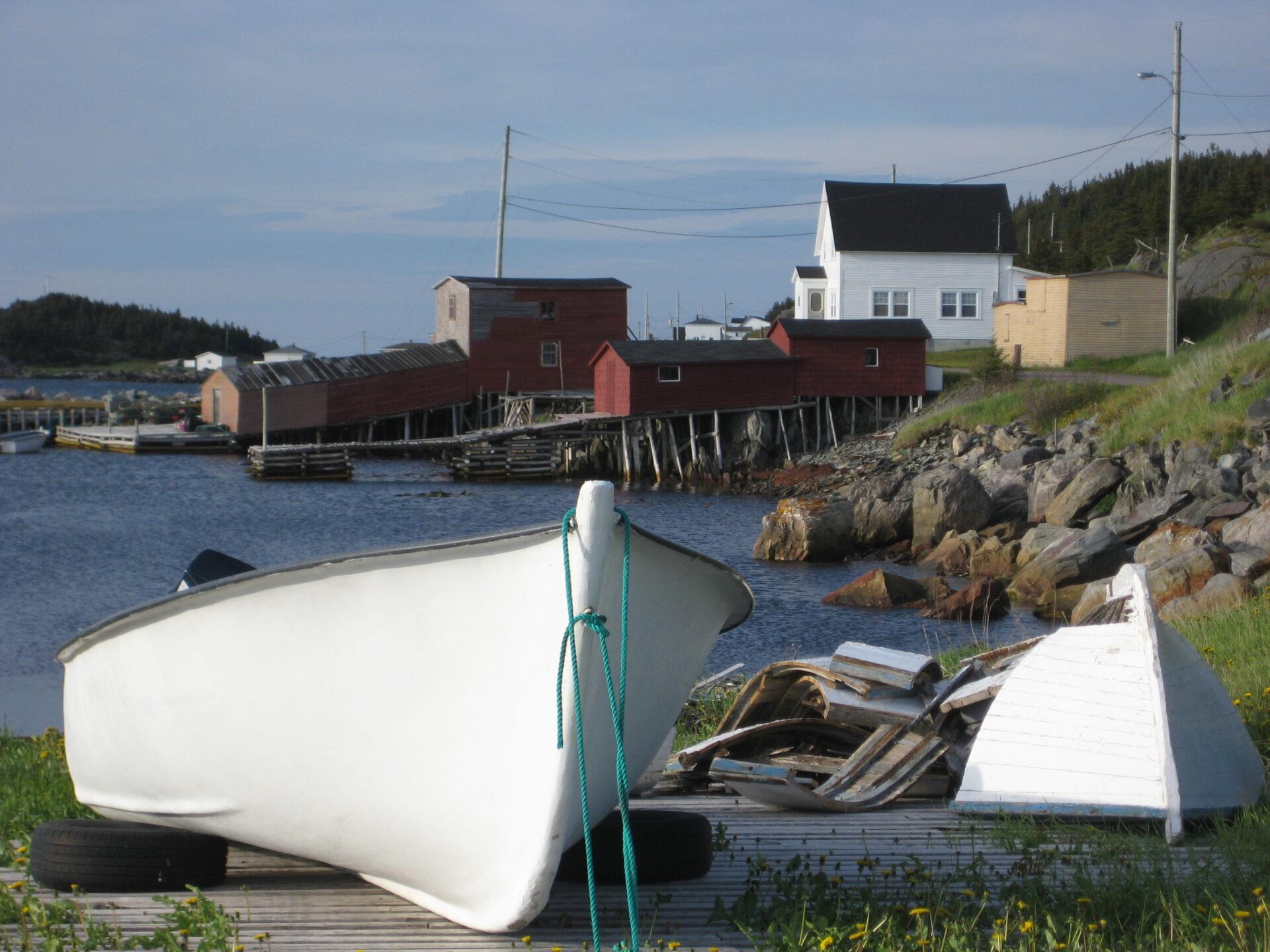 Green Roof Newfoundland 1