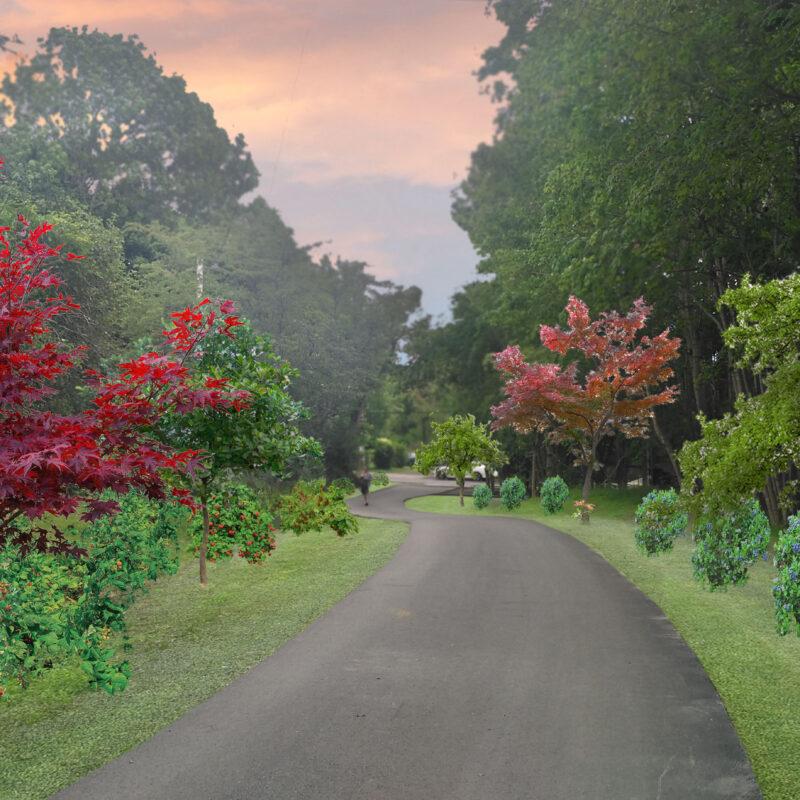 Connrose Park